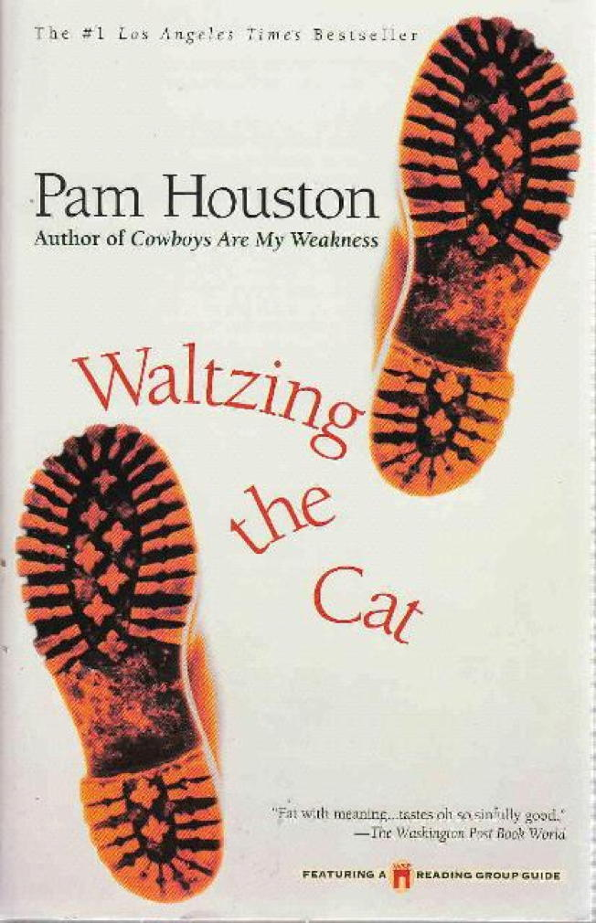 Book cover picture of Houston, Pam WALTZING THE CAT New York: Washington Square Press Books, 1999.