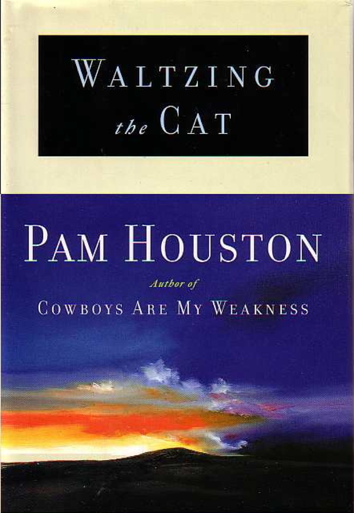 Book cover picture of Houston, Pam WALTZING THE CAT New York: Norton, (1998.)