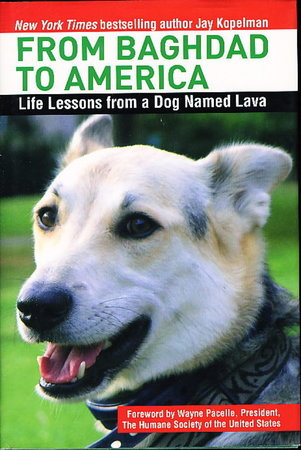 FROM BAGHDAD TO AMERICA: Life Lessons from a Dog Named Lava. by Kopelman, Jay.
