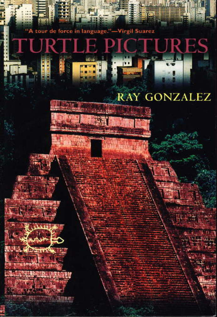 Book cover picture of Gonzalez, Ray TURTLE PICTURES. Tucson: University of Arizona Press, (2000.)