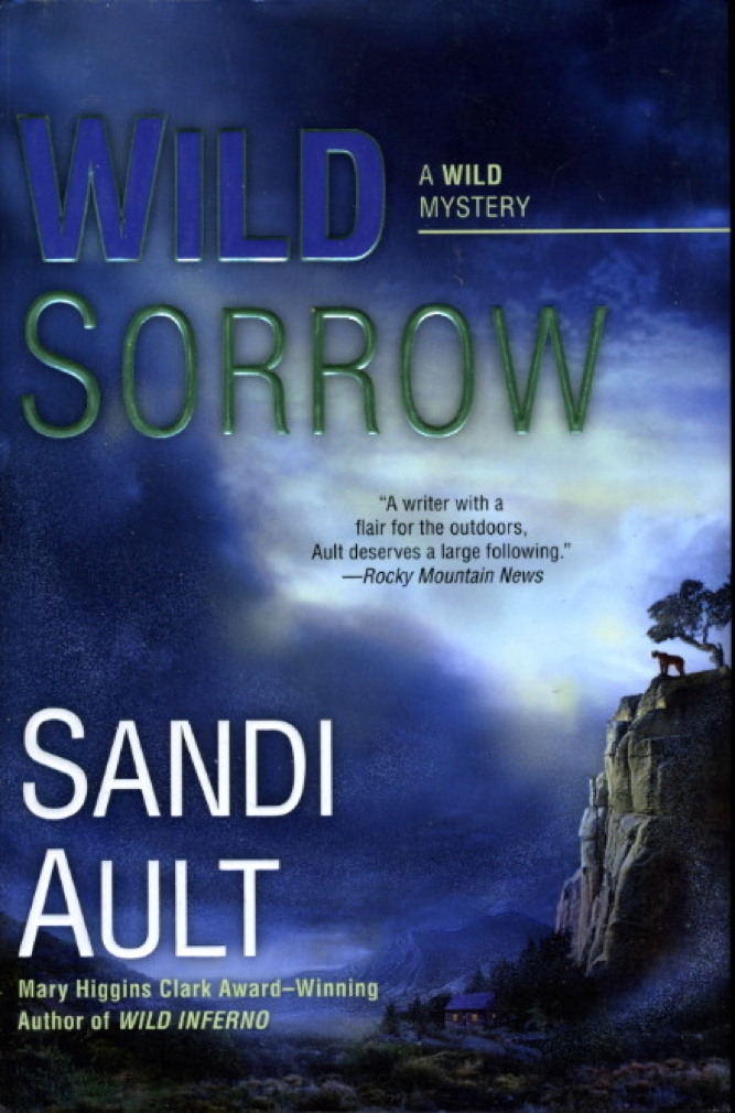 Book cover picture of Ault, Sandi. WILD SORROW. New York: Berkley, (2009.)