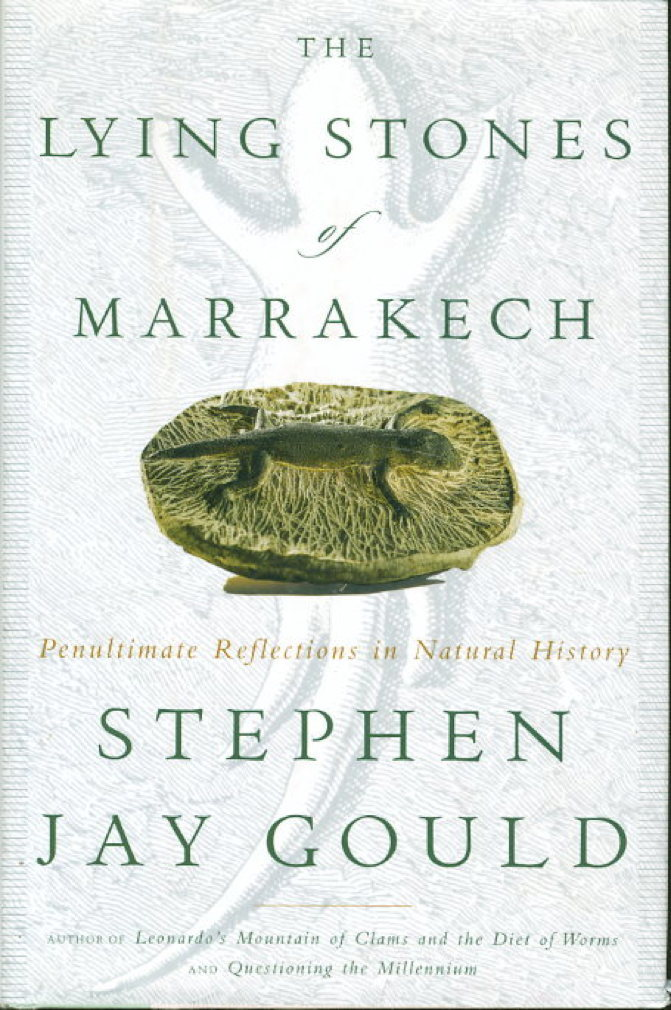 Book cover picture of Gould, Stephen Jay. THE LYING STONES OF MARRAKECH: Penultimate Reflections in Natural History. New York: Harmony, (2000.)