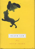 BLACK LAB. by Young, David.