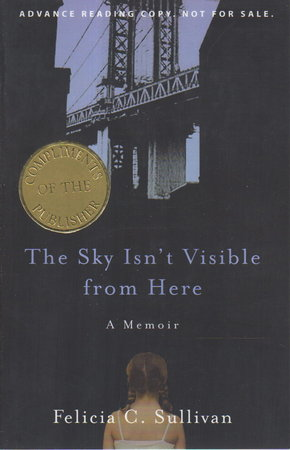 THE SKY ISN'T VISIBLE FROM HERE. by Sullivan, Felicia C.
