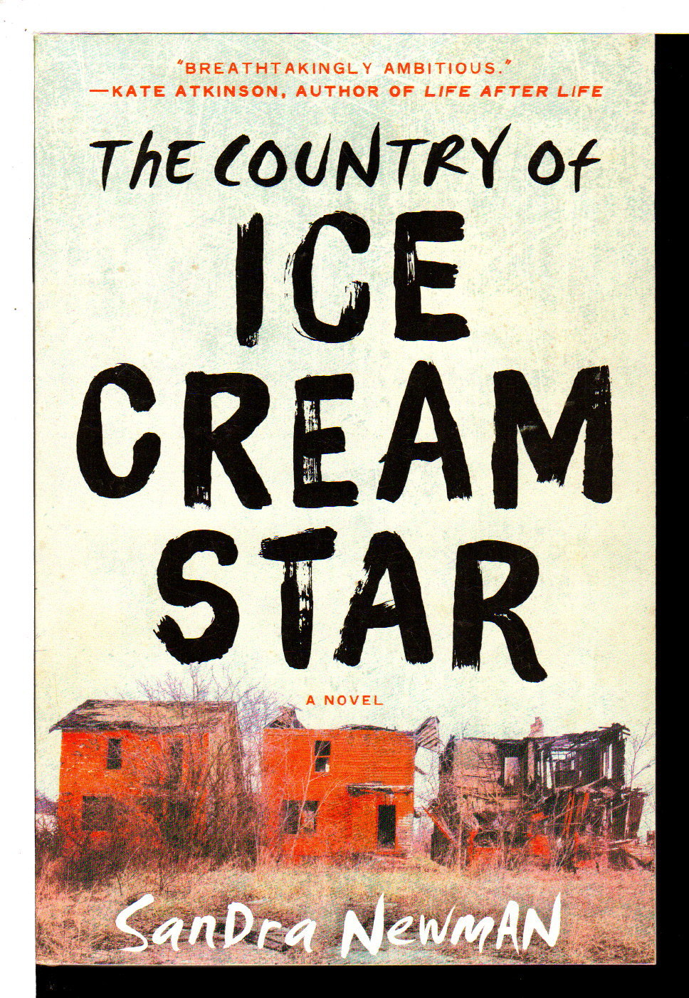 NEWMAN, SANDRA. - THE COUNTRY OF ICE CREAM STAR.